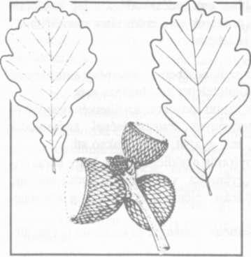 0dd3c75428 PÁPAI GÁBOR 1994. ÁPRILIS CXXIX. évfolyam