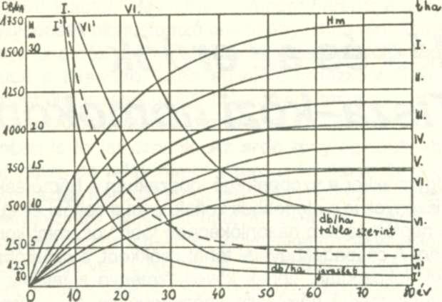 Hogyan használják a 14. szén-dioxidot az egyszer élõ tárgyak életkorának ragaszkodására?